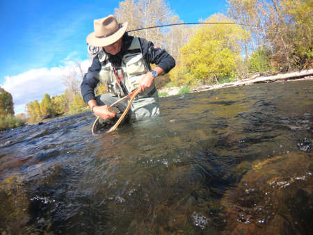 catching a rainbow trout by a fly fisherman