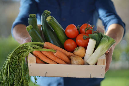 Close up of local farmer holding crate of organic seasonal vegetables