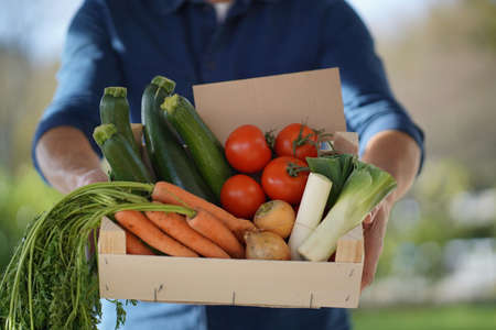 Close up of local farmer holding crate of organic seasonal vegetables with sign Reklamní fotografie
