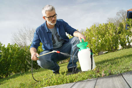 Man using garden sprayer on lawn in backyard Stock fotó