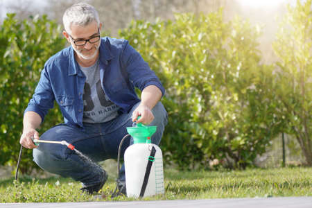 Mature man using garden sprayer in backyard