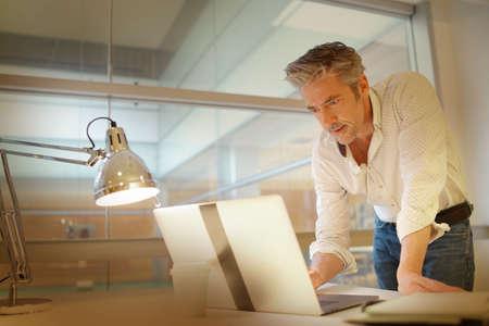 Mature businessman working in modern office
