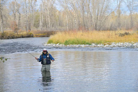 Flussfliegenfischer in Montana Standard-Bild