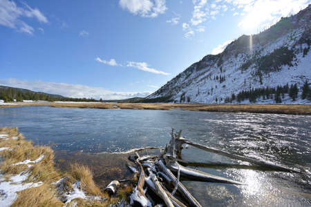 The Madison River in Yellowstone Park