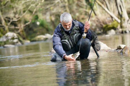 catch of a rainbow trout by a fly fisherman in the river