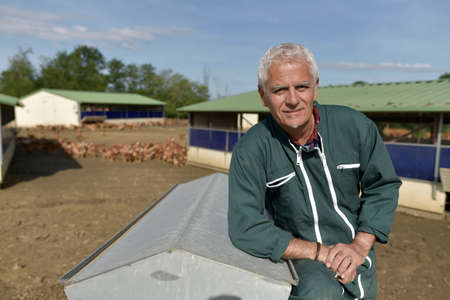 Portrait of farmer in poultry yard Banque d'images