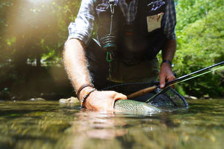fly fisherman in summer catching a rainbow trout fishing in a mountain river Reklamní fotografie - 151815050