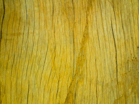 this is a texture of wood It