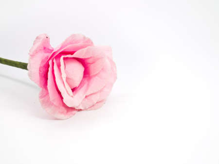 this is a pink Artificial flower on white background and it Stock Photo - 12829975