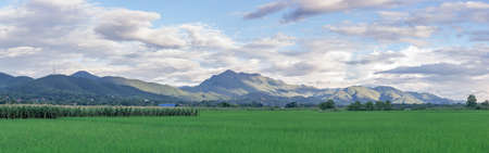 panoramas: asian rice field and mountain view, extra wide image, panoramas view