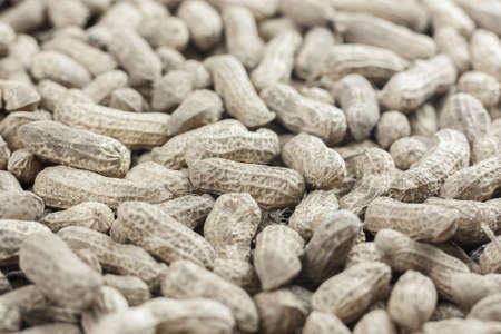 brown raw groundnut focus at center of image