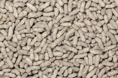 raw groundnut in top view
