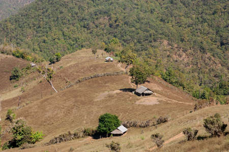 deforested view in local village