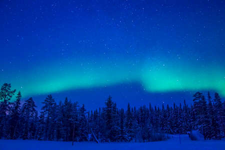 Lapland. Night. Winter forest. Starry sky and Northern Lights