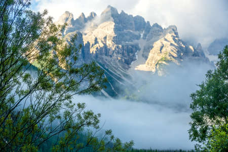 foreground focus: Italy. The Dolomites. Rocky mountains and thick fog. Green branches of trees. Focus on the foreground