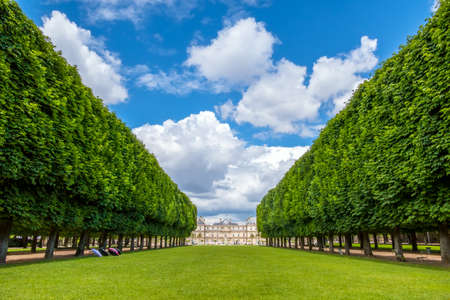 France. Summer Paris. Alley of the Luxembourg Garden overlooking the palace. Clouds