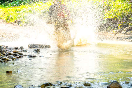 Sunny summer day. A lot of water spray hides athlete enduro when he overcomes a forest stream