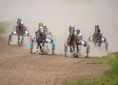 Sunny summer day at the hippodrome. Five horses harnessed to carts are runs Stock Photo