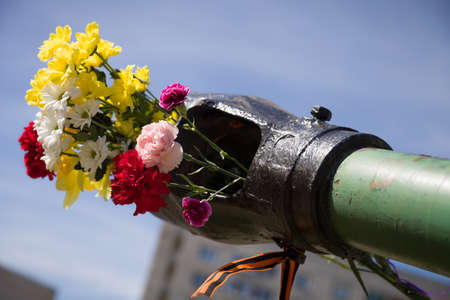 may: Beautifrul flowers in the barrel of the tank. May 9th. Victory day in Russia. Peace in the world. Memorial day Stock Photo