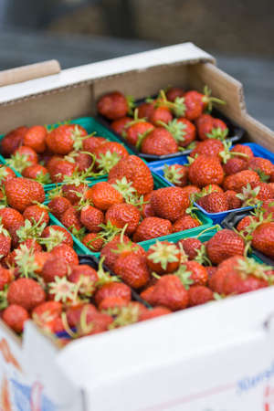 strawberies: Organic Norwegian strawberies in a paper box. Fresh berries just picked up in the strawberry field in a countryside ready for healthy snacks and desserts.