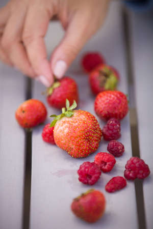 snack time: Womans hand taking fresh organic strawberries and raspberries. Berries on the grey background. Garden harvest on the table. Snack time. Natural and healthy dessert. Fingers picking a berry. Stock Photo