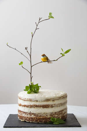 birds on branch: Delicious birthday cake with branch of a tree, birds, candles and number 2 as decoration. Beautiful white carrot cake on the black board for the second birthday party. indoors. Stock Photo