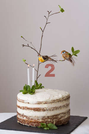 carrot tree: Delicious birthday cake with branch of a tree, birds, candles and number 2 as decoration. Beautiful white carrot cake for the second birthday party. indoors. Stock Photo