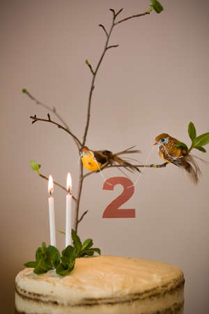 carrot tree: Delicious birthday cake with branch of a tree, birds, candles and number 2 as decoration. Beautiful white carrot cake for the second birthday party. indoors. . Stock Photo