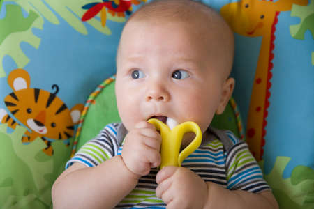 first teeth: Adorable baby less than a year old playing with  teething toy banana. top view on laying baby boy using teething banana toy. Childs first teeth.