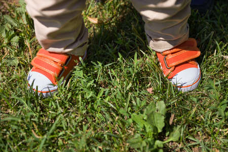 baby's feet: Toddlers legs in orange sneakers standing on grass. Top view on babys feet. Summer background. outdoors. Child making first steps Stock Photo