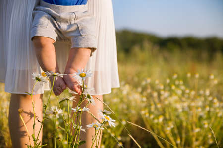 baby's feet: Closeup of babys bare feet. Young mother holding her little baby son on a wild flowers meadow on sunny summer day. Happy family. Woman with a child walking in the daisy field in the park. Outdoors.