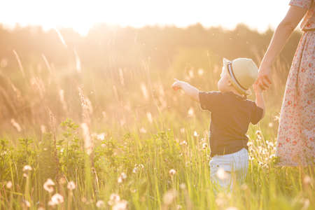 people holding hands: Back view on a cute little toddler boy in a straw hat holding his mothers hand and pointing into distance. Adorable child walking with his mom in the park on a sunny summer day. Family on sunset Stock Photo