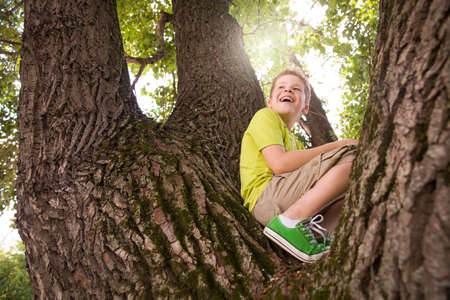 Portrait of cute kid boy sitting on the big old tree on sunny day.  Child climbing a tree. little boy sitting on tree branch. Outdoors. Sunny day. Active boy playing in the garden. Lifestyle concept Stock Photo