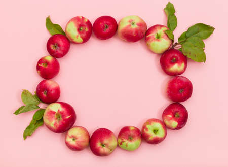 Top view on delicious red organic apples with leaves in a shape of circle on light pink background. Healthy food concept