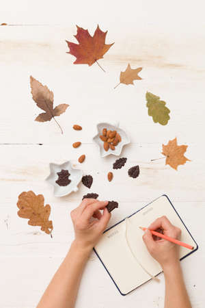 woman's hands: Top view on womans hands writing in notebook. Autumn background: leaves, chocolate, nuts on wooden white board. Stock Photo
