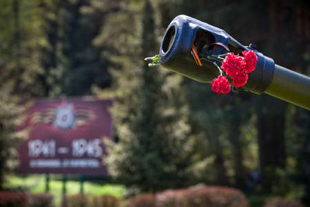 Hermosas flores en el barril del tanque. 9 de mayo. Día de la victoria en Rusia. Paz en el mundo. Día Conmemorativo