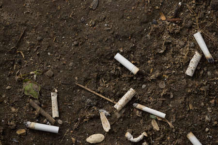 Top view on cigarette butts in the soil Stock Photo