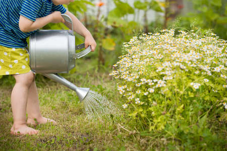 Cute little toddler boy watering plants with watering can in the garden. Adorable little child helping parents to grow vegetables.Activities with children outdoors. 스톡 콘텐츠