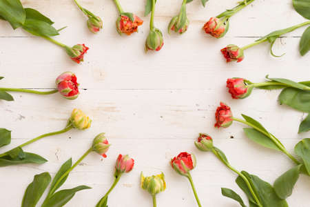 Top view on beautiful heart shape made of spring tulip flowers. Stock Photo