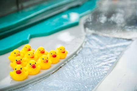 Group of yellow rubber toy ducks on a swimming pool edge Stock Photo