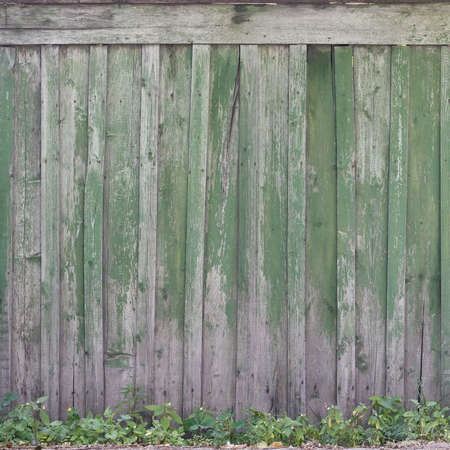 Closeup of texture of weathered wooden wall of green color. Aged wooden plank fence of vertical flat boards. Copy space Imagens