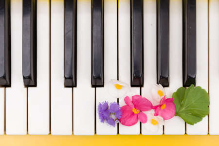 Closeup of yellow piano. Piano keys with nice bright flowers. Music concept