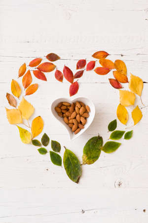 Top view on various autumn multicolored leaves in heart shape and heart shape bowl with almond nuts on white wooden background. Stock Photo