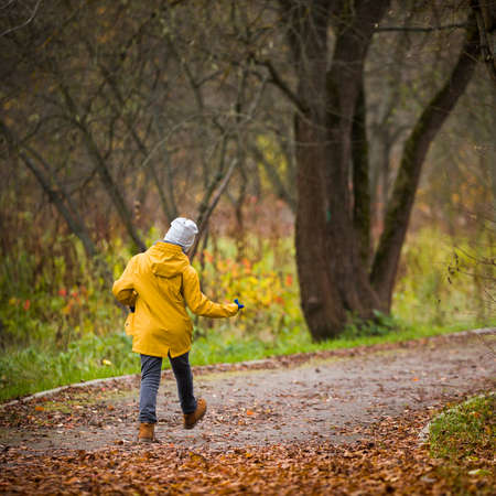 Closeup of back view on walking little child. Kid boy walking in the park on autumn day. Countryside lifestyle concept
