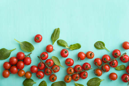 Top view on fresh organic cherry tomatoes with small basil leaves on turquoise background. Healthy food and eating concept.