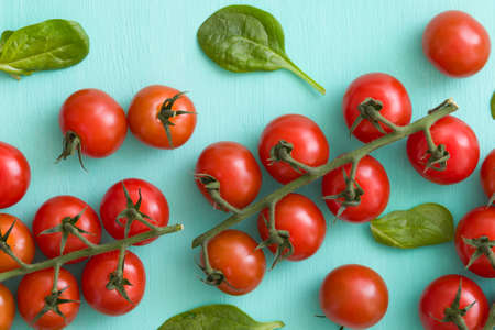 Closeup of bunches of fresh organic tomatoes and basil leaves on turquoise wooden background. healthy food.