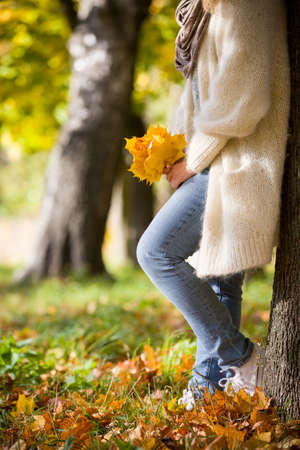 Closeup of womans hands holding beautiful bunch of bright autumn maple tree leaves in the park on a sunny day.