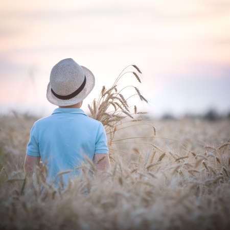 Back view on cute kid boy in straw hat walking in the wheat field on beautiful sunset. Child on the meadow.