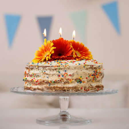 Closeup of a delicious white cake on a stand. Homemade cream cake decorated with natural flowers and candles. Birthday cake.