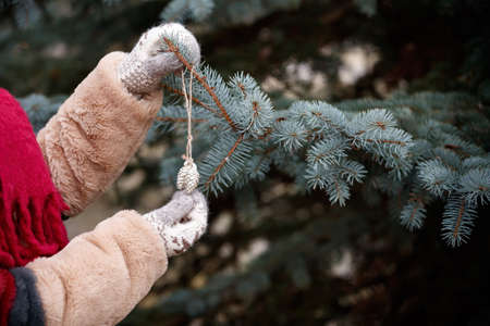 Hands of a girl in mittens are holding a Christmas tree decoration. Decorated Christmas tree in the background. New Years and Christmas